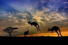 オーストラリア秋の楽しみ方